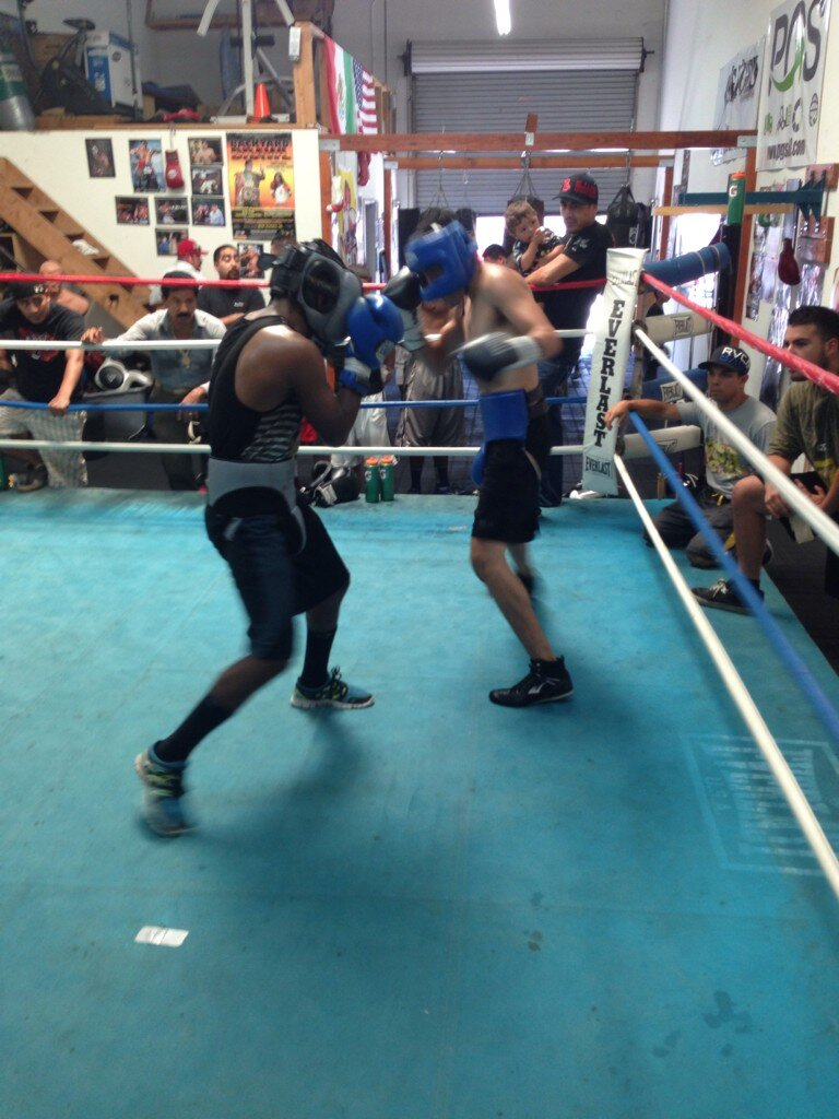 Oscar Negrete sparring at Who's Next Boxing Gym, photograph courtesy of MT Boxing Team